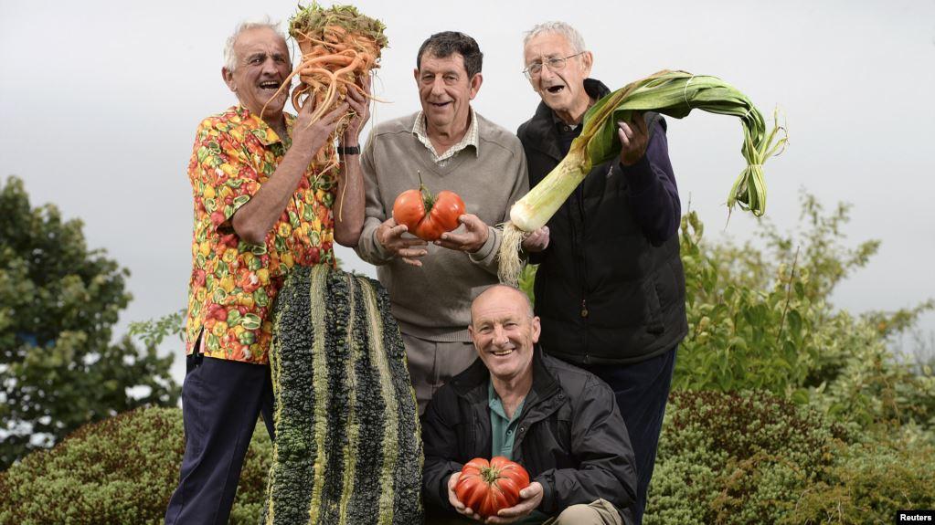 The Health Benefits of Gardening