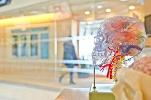 the empty brain 5fb5ea5c8f66e 300x199 - اربیتاس  : جامعهی مجازی تجربه و یادگیری زبان انگلیسی